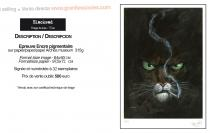 Guarnido Blacksad Affiche Signé